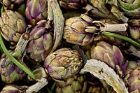 Globe artichokes, one of the local fresh vegetables at the Sunday morning market, Pollenca, Tramuntana, Mallorca, Balearic Islands, Spain, Europe