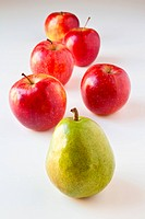 Follow the Leader _ Pear and Apples