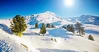 Sunny winter mountain lanscape
