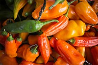 Hot Peruvian peppers