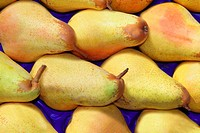 pear fruits in rows market background pattern