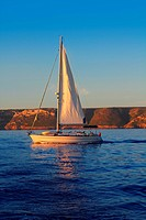 Sailboat sailing golden sunrise in blue ocean