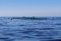 fish farm on blue ocean sea horizon