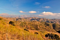 mountains of Malaga