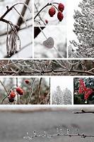 Winter combination