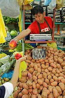 Chile, Arica, Mercado Colon, produce market, shopping, food, vegetables, fruit, Hispanic, man, scale, potatos, nectarine, sign, price, nutrition, heal...