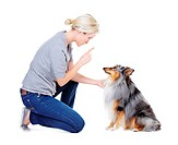 Attractive young dog owner training her shetland sheepdog