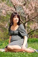 pregnant woman under blossom apple tree