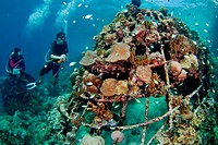 Divers surveying an artificial reef, Ihuru Barnacle Project, Angsana Maldives Ihuru, North Male Atoll, The Maldives.
