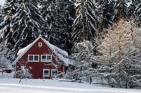 Cottage with winter landscape Koenigskrug near Braunlage, Harz, Lower Saxony, Germany