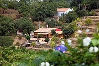 Country house in the Serra de Monchique, Algarve, Portugal, Europe