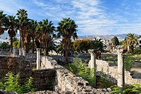 Excavations of the antique town of Agora, Kos town, Kos, Dodecanese Islands, Greece, Europe