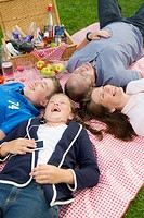 Family relaxing on picnic blanket