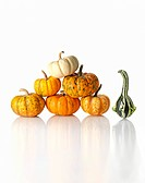 One Gourd Next to Stack of Small Pumpkins on White Background