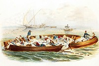 Tuna fishing in France  Antique illustration, 1856