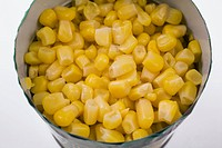 Close up of yellow corn kernels in a tin can on a light gray background
