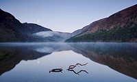 Early Morning Mist Over Upper Lake Glendalough With The Moon Reflecting In The Calm Still Water, County Wicklow Ireland