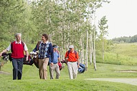 Foursome of golfers walking on fairway