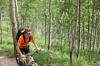 Young adult man riding mountain bike in the woods