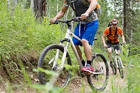 Male mountain bikers climbing trail in woods
