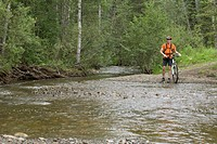Mountain biker standing by edge of stream in the woods