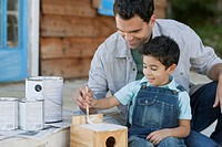 Father and four year old son painting birdhouse