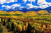 Fall color, Kebler Pass, near Crested Butte, Colorado USA