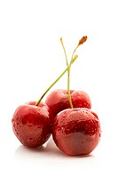 Studio shot of a three fresh cherries isolated on white