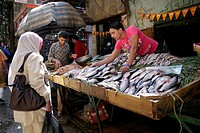 EGYPT  Street scenes in so called ´Islamic Cairo´, the old quarter of the city near Bab Zuela  Market stall selling fish