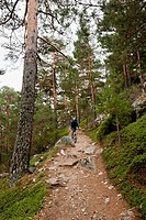 Camino Ortiz, Valley Canyon, Natural Park of the Sierra de Guadarrama, Madrid, Spain, Europe