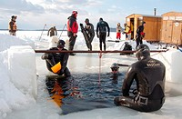 ice free diving, Arctic, Russia, Russian north, north, Kareliya, White sea