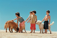 Boys Standing on Beach With Their Dogs