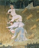Grain harvest, detail from the Month of August, panel taken from Cycle of the Months, by Master Venceslao, fresco, Tower Aquila, Buonconsiglio Castle,...