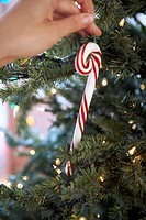 Woman hanging candy cane on Christmas tree