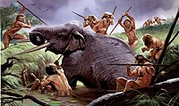 Artwork of a Homo heidelbergensis tribe killing an elephant. H. heidelbergensis is an extinct hominid that formed a relatively recent part of the huma...