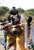 Rural women carrying water pots ; Marathwada ; Maharashtra ; India
