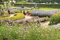 Bryany park ; Kodaikanal popularly known as Kodai ; Tamil Nadu ; India