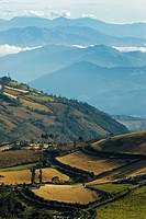 Wheat Fields of Guaitarilla, Nari&#241;o, San Juan de Pasto, Pasto, Colombia