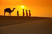 Rajasthani man with camel and women carrying water pots going through sand dunes at sunset , Jaisalmer , Rajasthan , India