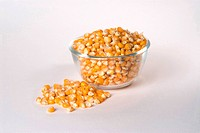 Corn in bowl spread on white background