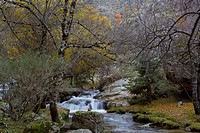 Guadarrama National Park