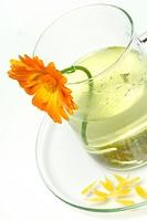 Garden Marigold tea, cup / Calendula officinalis