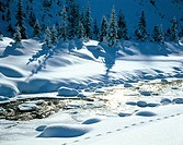 Austria, Europe, Tyrol, Arlberg, Saint Anton, St. Anton am Arlberg, Verwall, winter, brook, snow, Rosanna, trees, ice, track, trace, spruces, back lig...