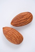 two brown almonds
