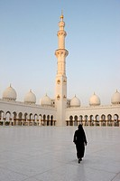 Sheikh Zayed Grand Mosque. The biggest mosque in the UAE and considered one of the 10 largest mosques in the world.