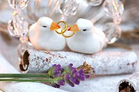 Two doves with wedding rings