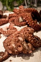 Octopus for sale in the Valencia´s Central Market, Spain