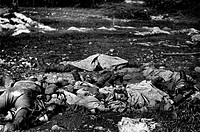 Some Austrian soldiers lying dead after losing their lives in the battle of Vallone. Jamiano Doberdò del lago, 1916