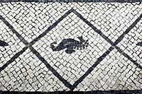 Aveiro Tiles, traditional portuguese pavement