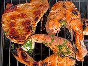 Fleisch, Lachsstücke auf Grill meat, fish on barbecue